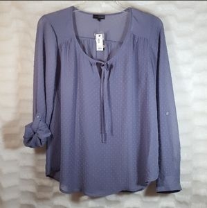 🎁NWT The Limited 100% polyester Periwinkle blouse